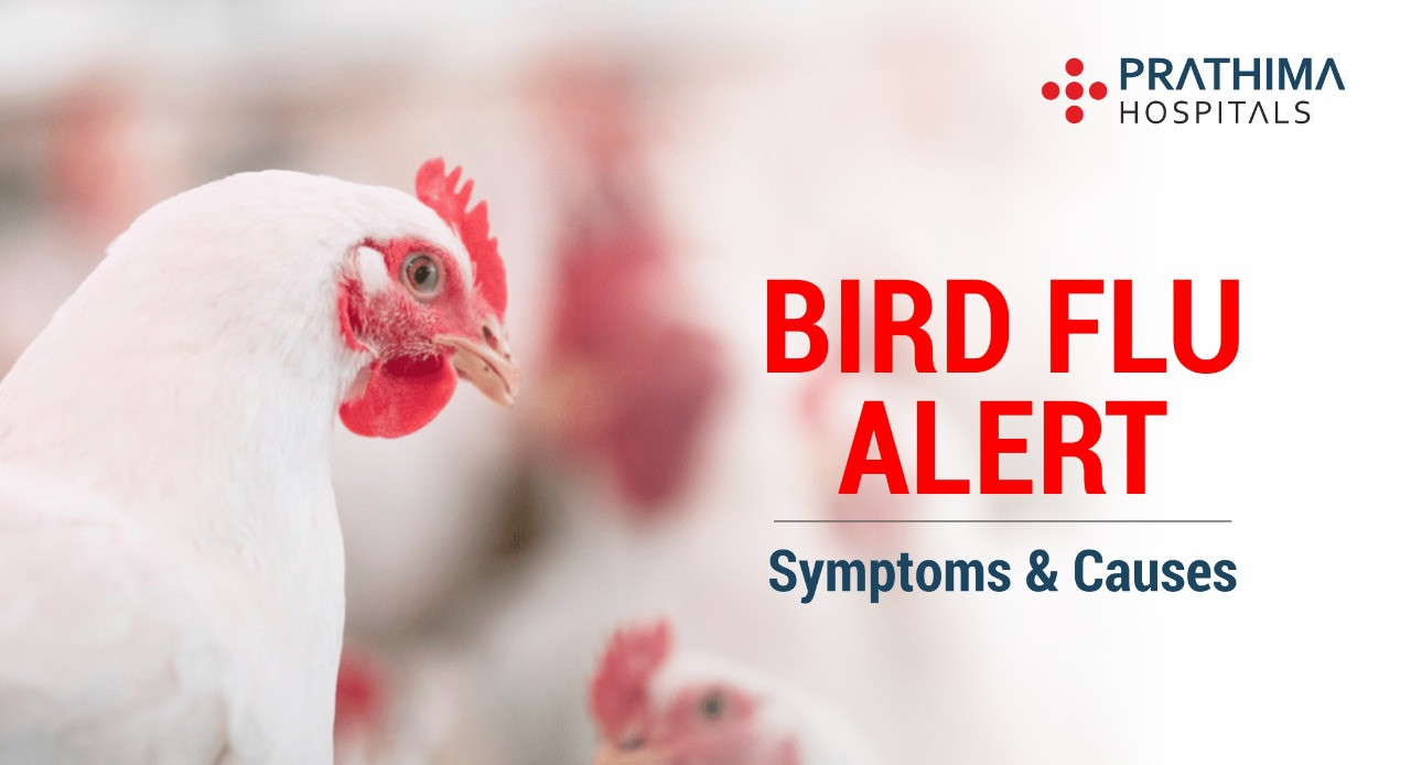 Bird Flu Symptoms and causes
